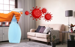 Substitutes for household cleaning products